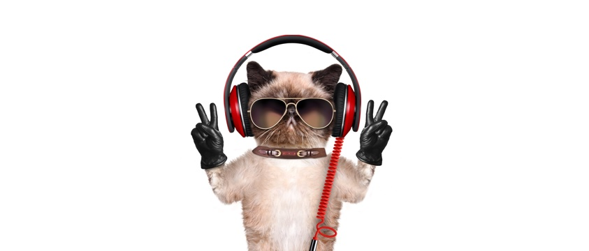 cartoon cat making V sign with black gloves, also sunglasses and ear protectors