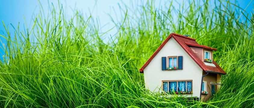 virtual image toy house in long grass