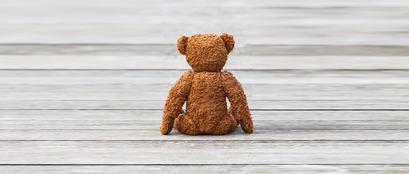 teddy bear seen from behind on wooden deck looks into distance